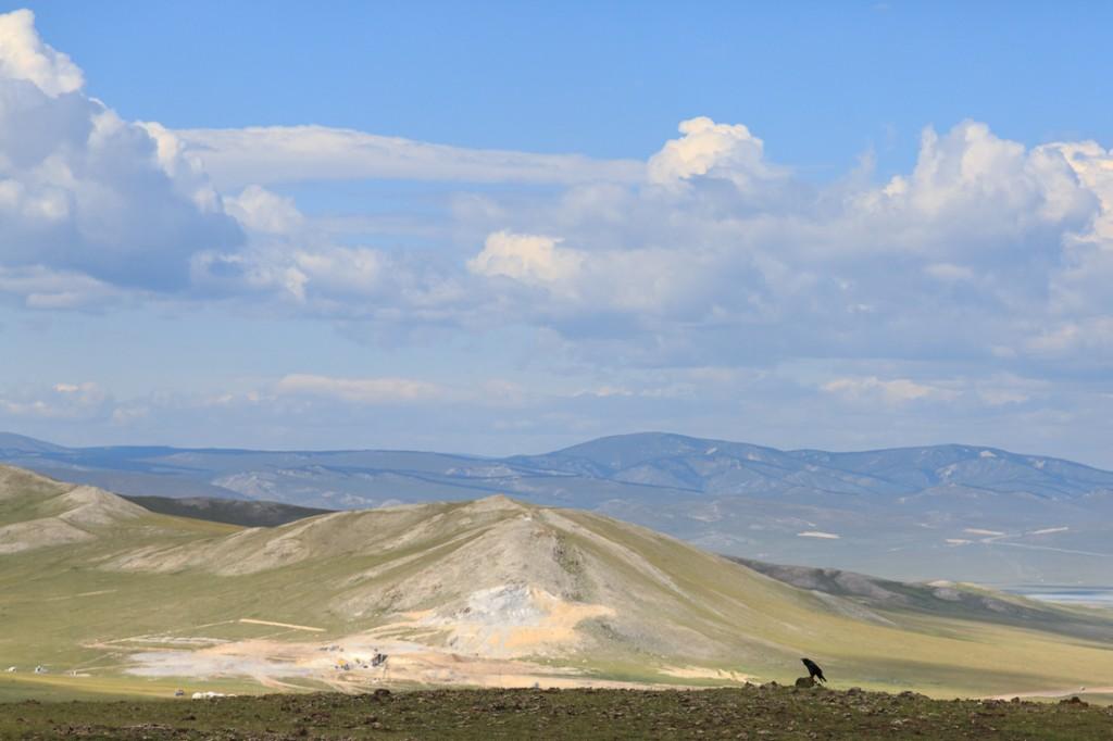 Landschaft mit Krähe