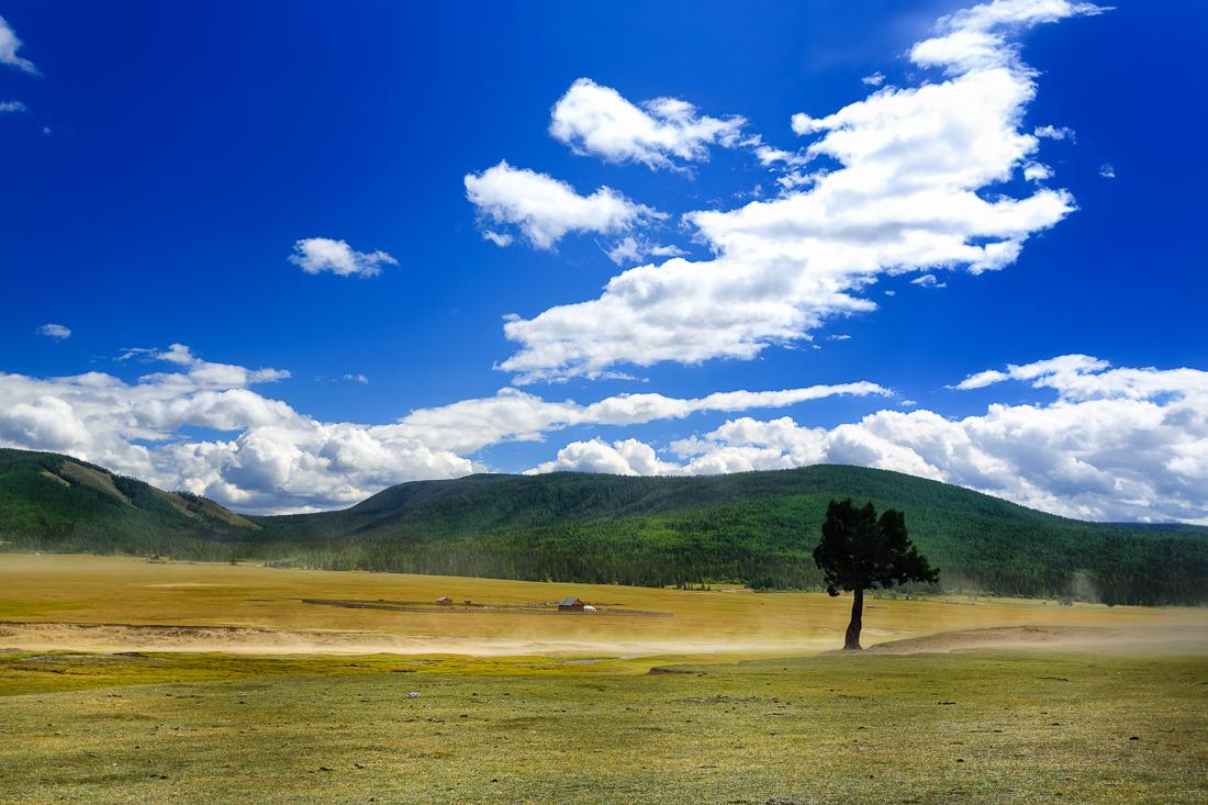 Mongolei IV – Durch die große Ebene