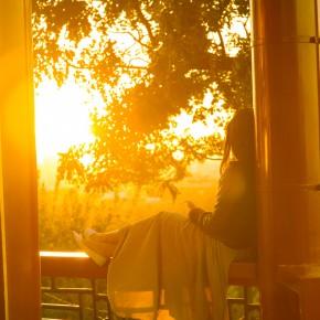 Sunset idyll