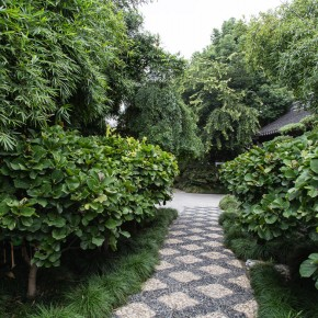 The garden of the temple of Confucius