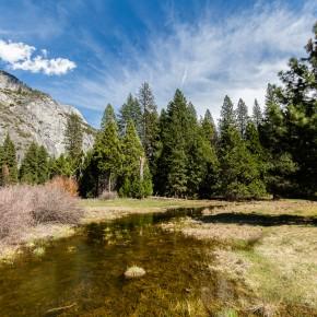 Wasser, Bäume, Berge II